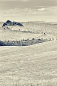 picture of abandoned house  - Stylized view of the abandoned old house in the hills of Tuscany with cypresses on the road - JPG