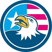 image of bald head  - Illustration of an american bald eagle head looking up viewed from the side with american stars and stripes flag in the background set inside circle done in cartoon style - JPG