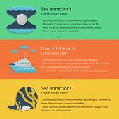 image of butterfly fish  - Design elements with scallop - JPG