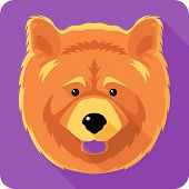 dog chow-chow icon flat design poster