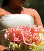 stock photo of one dozen roses  - bride holding bouquet of roses - JPG