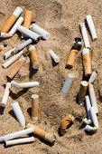 Cigarette butt in sand. Litter on the beach