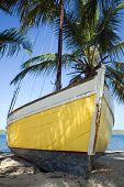 A yellow-hulled sloop sits on a tropical beach.