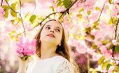 Girl On Dreamy Face Standing Under Sakura Branches With Flowers, Defocused. Adorable Young Girl Havi poster