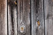 Wooden Planks Boards Background. Wood Plank Texture For Your Background poster