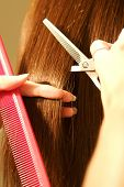 image of hair streaks  - an image of a Female hair cutting at a salon - JPG