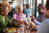 Group Of Smiling Senior Friends Meeting For Meal In Restaurant poster
