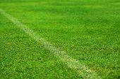 Grass Field, Green Football Field.grass Field, Green Football Field poster