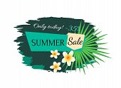 Summer Sale Discount Banner Vector. Only Today, Big Offer And Proposition In Summertime Season. Flou poster