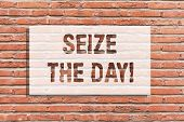 Text Sign Showing Seize The Day. Conceptual Photo Embrace Opportunities Have Motivation Inspiration  poster