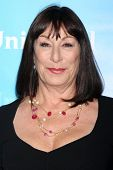LOS ANGELES - JAN 6:  Anjelica Huston arrives at the NBC Universal All-Star Winter TCA Party at The