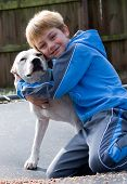 picture of pit-bull  - Boy hugging his pit bull dog smiling at camera - JPG