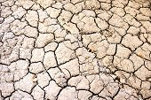 Dry Land Texture. Dry Cracked Land Surface. Drought Land. Drought Earth Background. poster