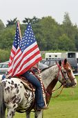 Flags and horses