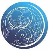 stock photo of pisces  - Contour image of two fish on a blue circle for Pisces - JPG