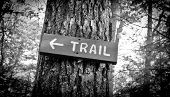 Pointing Trail Sign