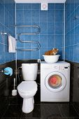 picture of washing-machine  - Amusing photo of the cat sitting in a basin in a bathroom - JPG
