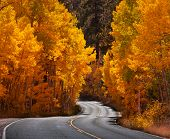 autumn in Sierra Nevade