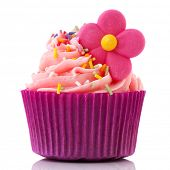 Single cupcake in purple and pink isolated over white background