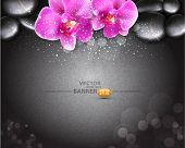 Vector romantic background with two orchids