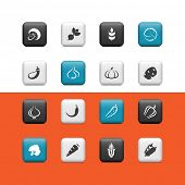 Vegetables icons. Buttons