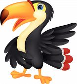 pic of animated cartoon  - Vector illustration of Cute toucan cartoon presenting - JPG