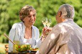 Happy senior citizens clinking glasses in garden