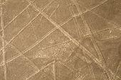 Nazca Lines - scorpion