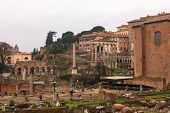 Imperial Fora, Temple Of Peace In  Rome