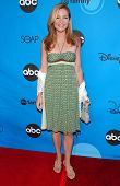 PASADENA, CA - JULY 19: Jennifer Westfeldt at the Disney ABC Television Group All Star Party on July 19, 2006 at Kidspace Children's Museum in Pasadena, CA.