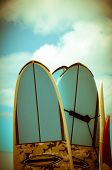 foto of watersports  - VIntage Hawaii Image Of Retro Styled Surf Boards - JPG