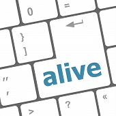 Alive Text On Laptop Computer Keyboard Key Button