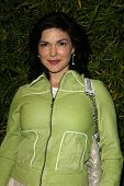 LOS ANGELES - APRIL 24: Laura Harring at the Brandon Davis and Replay celebrate store opening and th