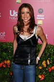 HOLLYWOOD - APRIL 26: Shannon Elizabeth at the US Weekly Hot Hollywood Awards at Republic Restaurant and Lounge on April 26, 2006 in West Hollywood, CA.