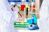 stock photo of centrifuge  - Gloved hand of a laboratory technician mixing chemical solutions in a test tube on a centrifuge with another colleague standing ready with an automated pipette - JPG