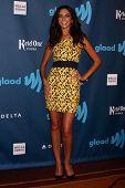 Terri Seymour at the 24th Annual GLAAD Media Awards, JW Marriott, Los Angeles, CA 04-20-13