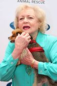 BEVERLY HILLS - APRIL 29: Betty White at the Old Navy Nationwide Search for a New Canine Mascot at F