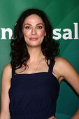 Joanne Kelly at the 2013 NBC Universal Summer Press Day , Langham Huntington Hotel, Pasadena, CA 04-22-13