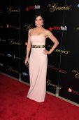 Lana Parilla at the 2013 Gracie Awards Gala, Beverly Hilton Hotel, Beverly Hills, CA 05-21-13