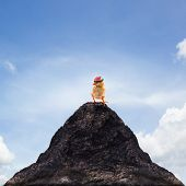 Young Kid Chick Baby Standing On Top Peak Of Mountain Abstract For Success ,goal ,target Leader,lead