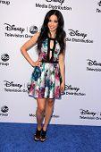 Edy Ganem at the Disney Media Networks International Upfronts, Walt Disney Studios, Burbank, CA 05-19-13
