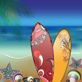 surfboards on summer beach