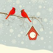 stock photo of cardinal-bird  - Cute red cardinal bird with birdhouse on branch in winter - JPG