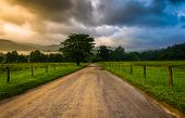 stock photo of cade  - Dirt road on a foggy morning at Cade - JPG