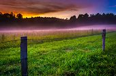 picture of cade  - Fog at sunset at Cade - JPG