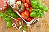 foto of plum tomato  - Homemade tomato sauce made from fresh tomatoes and basil
