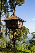House On Tree At Thong Pha Phum National Park