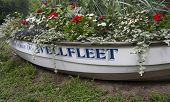 Boat Filled with flowers