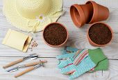 High angle shot of a group of items for potting and planting seeds. Horizontal format on a rustic wo