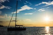 Sail Returning To Docks In The Evening